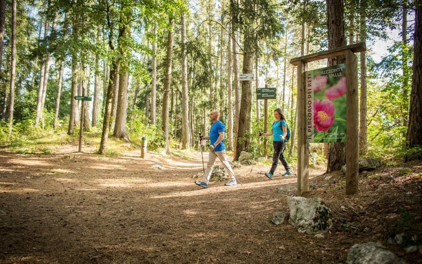 Bosbaden en boomknuffelen in Trentino
